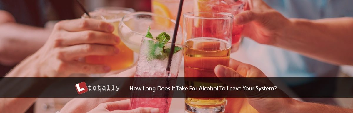 How Long For Alcohol To Leave System